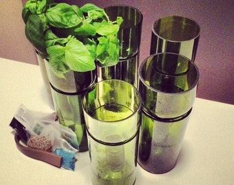 Recycled Self Watering Wine Bottle Planter Complete Kit - Grow Basil or Parsley