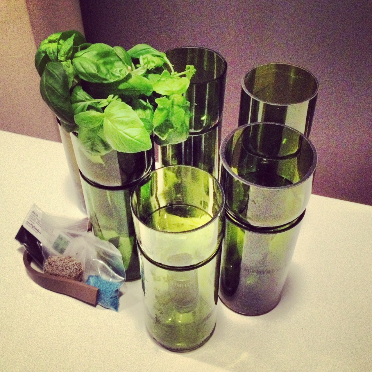 Recycled wine bottle glasses - Recycled Self Watering Wine Bottle Planter Complete Kit Grow Basil Or Parsley