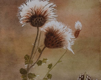 Original signed Irish Watercolour Painting by Artist MARIE LEWIS - Dandelion  4