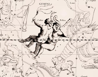 Astrology horoscope, Night sky, Star constellation, 93