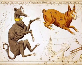 Moon poster, Constellation, Ancient maps, Constellations of Canis Major, Lepus, Columba Noachi and Cela Sculptoris, 148
