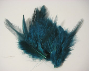 Teal Hackle Hen Feather Fringe / 20 loose feathers