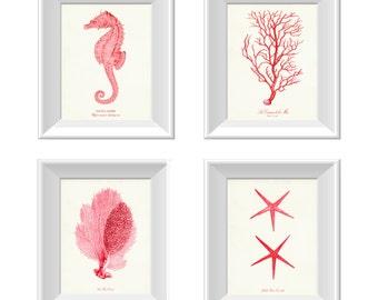 Coral Pink Nautical Art Print set of 4, Nautical Posters Set, Starfish Print,  Seahorse and Coral Prints, Beach House Decor, Nautical Decor