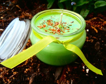 Fresh LIME Soy Jar Candle