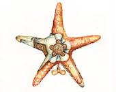 RESERVED for Nicole DAmbra - Steampunk Starfish - Original Painting 12x9