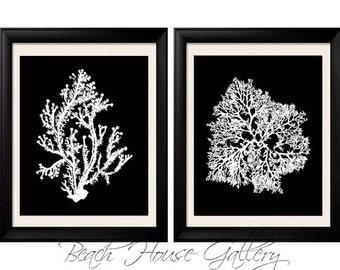 Black White Coral Wall Art, White Black Coral Print, Black White Wall Art, Black White Home Decor, Coral Print, Set of Two Prints