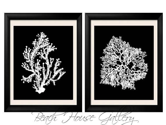 Black White Coral Wall Art White Black Coral Print Black