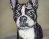 Boston Terrier Dog Art Print - ArtByJulene