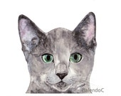 RESERVE LISTING For Joana - Art print of Original watercolor painting and ink and pencil drawing - Russian Blue Cat - 4 x 6