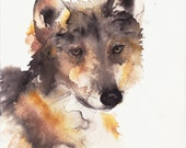 Wolf Art - Mexican Gray Wolf - 11x14 Fine Art Print Dog Art Wolf Desert Art Southwest - DustyShamrockStudio