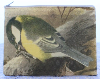 Great tit illustration-  Little Purse