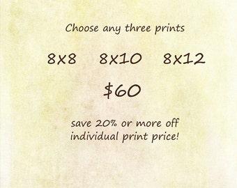 Discount Set - Choose any THREE Prints - 8x8, 8x10, 8x12 - Save at least 20%