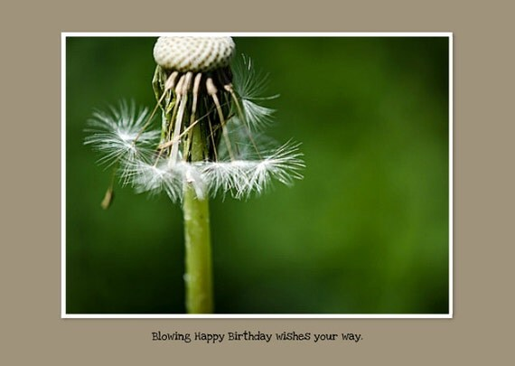 "Happy Birthday Photo Greeting Card. Sending Birthday Wishes with Dandelion Seeds. Flat (NOT FOLDED) 5""x7"" Framable Card."