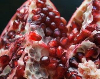 "Pomegranate Photo- 5"" Square Close-up Macro Photograph of Pomegranate Seeds"