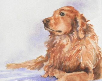 Abu Golden Retriever dog Digital Reproduction Print of Original Artwork by Jonnie J. Baldwin