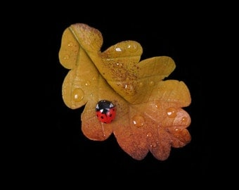 Yellow Oak Leaf & Ladybird Brooch