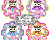 OWL and PAISLEY STICKERS, Bodysuit, Baby Monthly, Girl Monthly Stickers, Baby Shower Gift, Newborn, Paisley Print Stickers, Adorable Owls