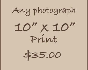 """10"""" x 10"""" print"""