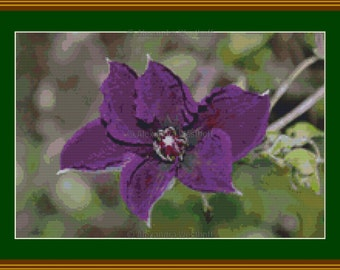 "Cross stitch chart ""Clematis 3"""