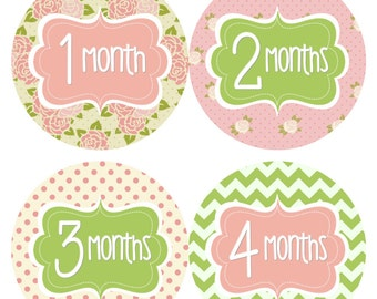 Monthly Baby Stickers Baby Monthly Stickers Girl Green Pink Floral Stickers Monthly Bodysuit Sticker Baby Shower Gift Photo Prop -Jenny-R