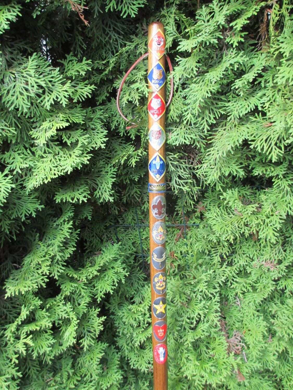 Boy Scout Wooden Hiking Walking Stick B S A By