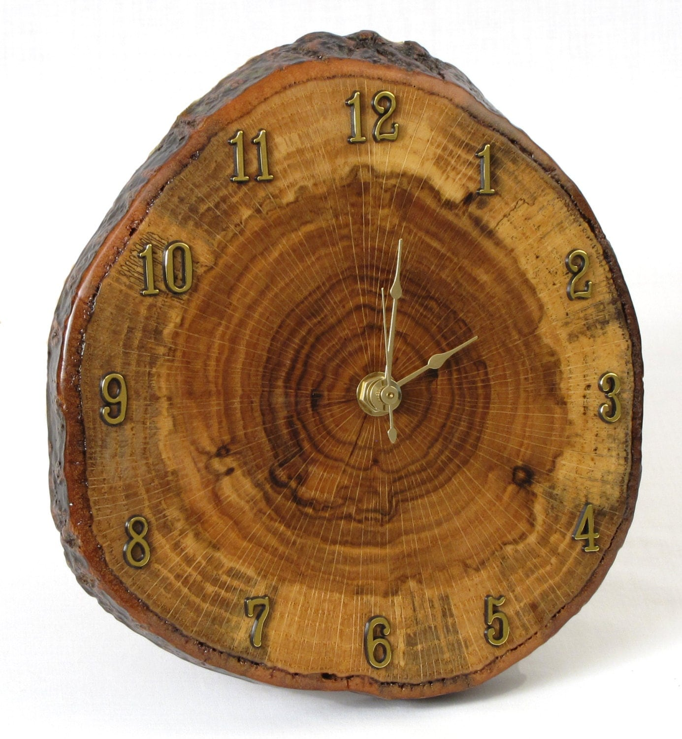 Red Oak Tree Slice Wall Clock