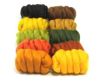 Autumn Leaves - 10 Colours - Dyed Merino Wool Tops - 250g / 9oz - Wet / Needle Felting - Roving - Spinning