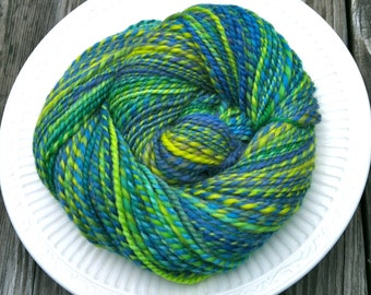 TROPICAL BIRD Handspun 2Ply Worsted/ Aran Yarn