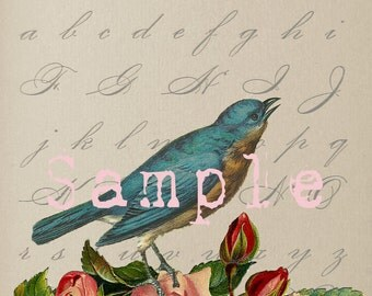 TiffanyJane Instant Download Bird on Alphabet Book page  For Art collage--Embellishment--Paper Tags--Scrapbooking-Altered Art