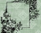Digital Download Daffodil Jonquil, Narcissus Frame Border, digi stamp, digis, Antique Illustration Add Photos or Text