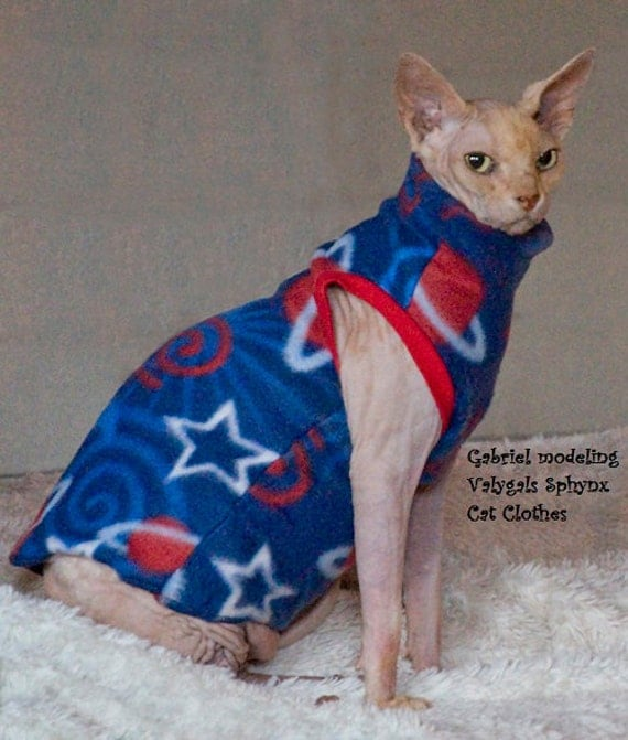 Hairless Cats in Clothes Sphynx Cat Clothes 16