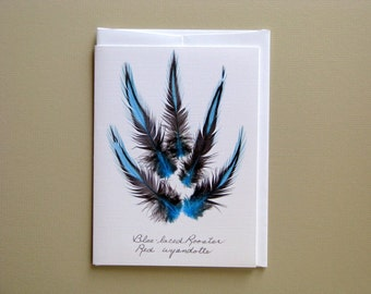 Blue Laced rooster feather card, gift for a bird watcher, feather greeting card, no.05