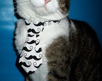 Moustache Cat Necktie on Breakaway Collar