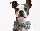 Charcoal Grey Polka Dot Dog Bow Tie - Wedding Accessories For Dogs