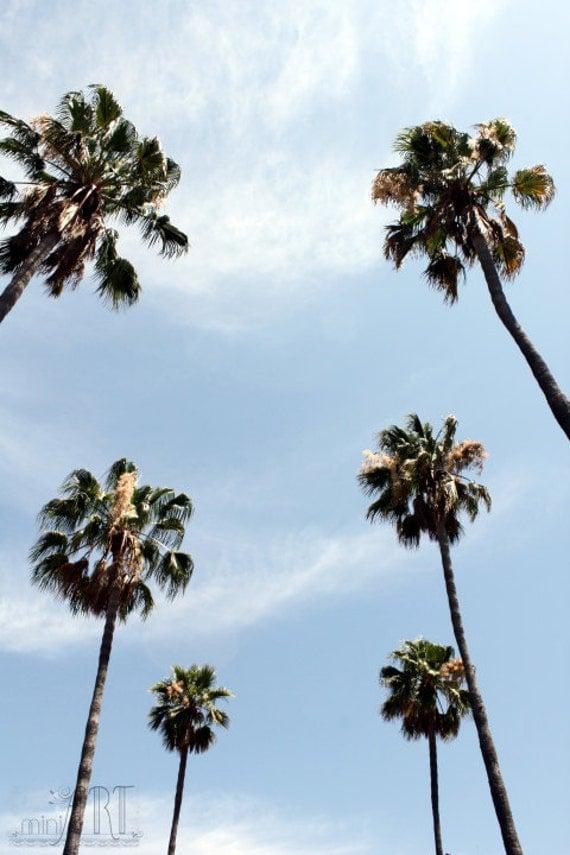 Palm Tree Decor California Wall Art Home Decor Los Angeles Art