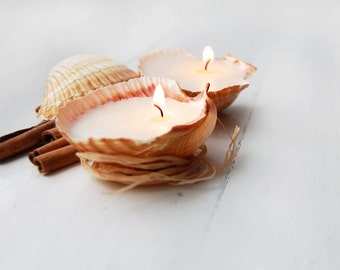 Eco-friendly Shell Candles - Scented Handmade Candles - Reusable Seashells - Cottage Decor - Beach Wedding Favors - Beach Party Decor
