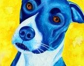Blue Dog Art Fine Art Print Modern Wall Art Limited Edition 8x10 or 11x14 Print Watercolor Painting Pit Bull Art Print Custom Dog Painting