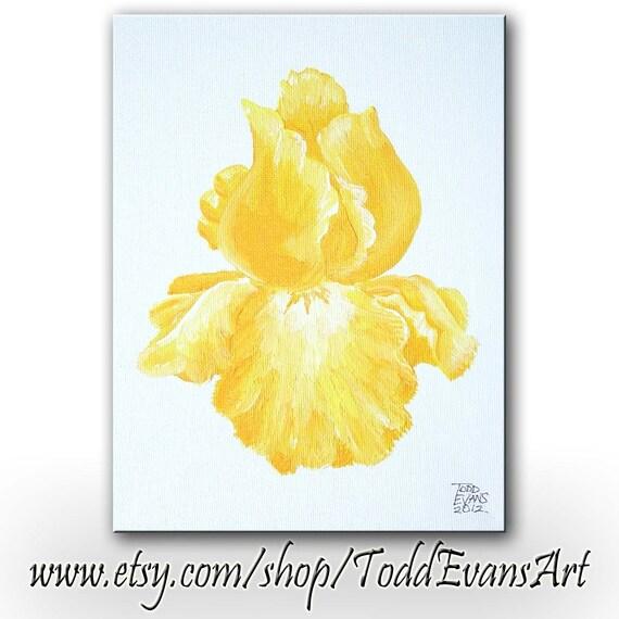 YELLOW IRIS, PAINTING, Golden Iris, Iris, flower, Iris flower, colorful, original painting, Todd Evans, Etsy