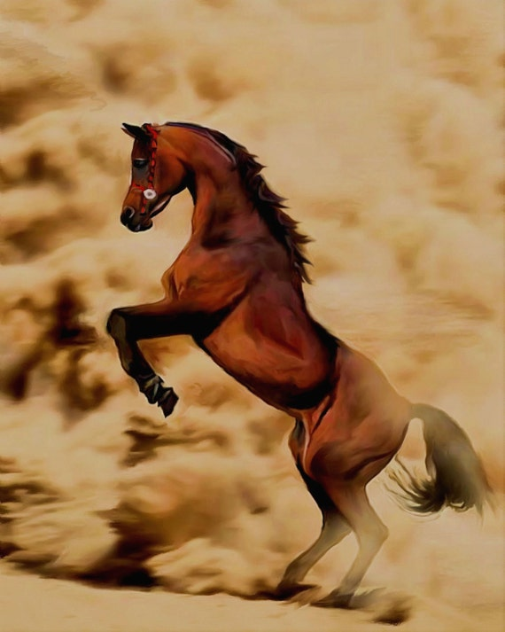 overiding Storm Animal painting Horse painting Realistic