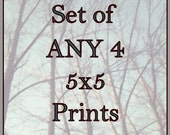 Set of ANY 4 - 5x5 Prints - Pick any 4 images from the collection and save