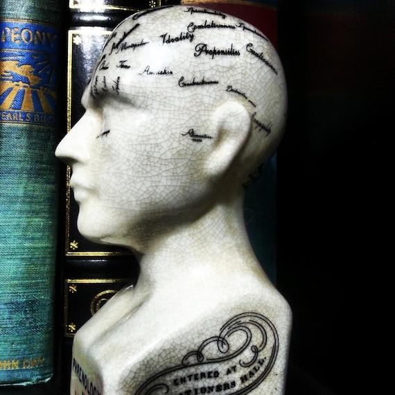 Beautiful phrenology statue bust head art antiques science by tgxc