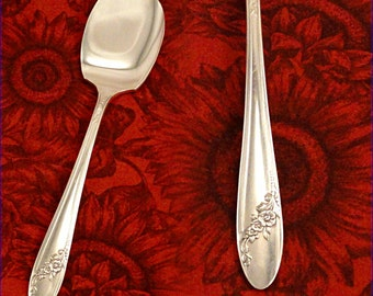 EX  Queen Bess Jelly Jam Pate Server Knife Silver Plate 1946 Vintage Silverplate Silverware by Oneida Community Tudor Plate