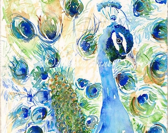 Peacock of Teal Turquoise and Royal Blue - animal art Watercolor Giclee 10x15 Print