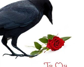 Valentine Crow bird lover Valentine: Crow Finds a Rose