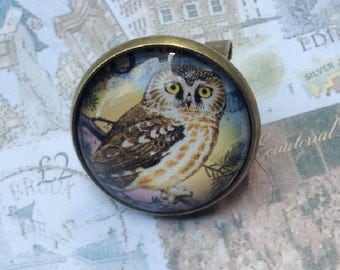 Little Owl One of a Kind Glass Dome Lapel Pin Handmade with a Real Vintage Postage Stamp, 20mm, 20B-000010
