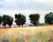 Trees Meadow Field Landscape Watercolor Art Print Matted Belinda DelPesco