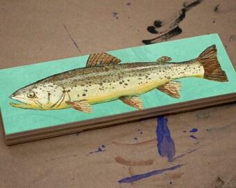 "Medium Freshwater Fish Art Series Art Block- Brown Trout Art Print- 9"" x 3"" Fish Wall Decor Fisherman Gift for Dad- Lake House Fish Print"
