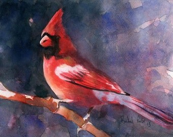 Cardinal Song Bird Art Print of my Painting Watercolor