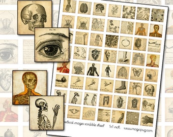 Antique Medical Engraving 1 inch square Digital Collage  for jewelry and mixed media 25mm 1x1 25.4mm square