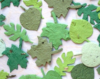 200 Seed Paper Confetti Leaves - Plantable Confetti Leaf Wedding Favors - Oak Maple Birch - Spring and Fall Plantable Paper Leaves